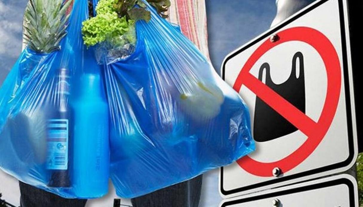 Daha bir ölkədə plastik paketlər qadağan edildi