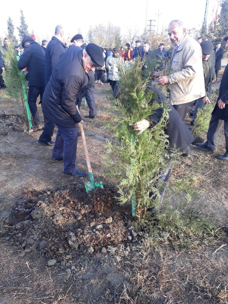 Azərbaycanda 650 min ağacın əkilməsinə start verildi — FOTO