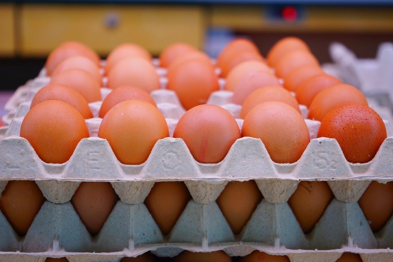 Kənd yumurtaları alarkən diqqətli olun: BUNLARI BİLMƏLİSİZ